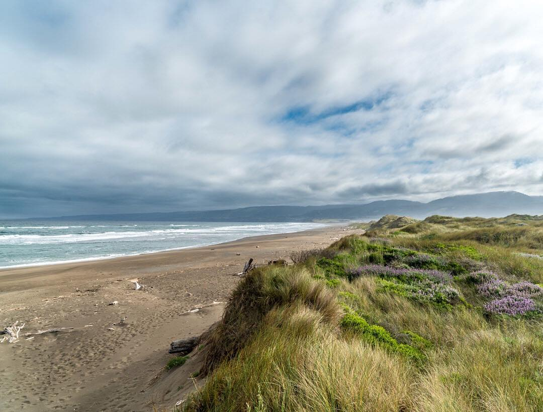 dune-hiking-manchester-state-park-IG